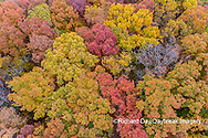 63876-02602 Aerial view of fall color trees Stephen A. Forbes State Park Marion Co. IL