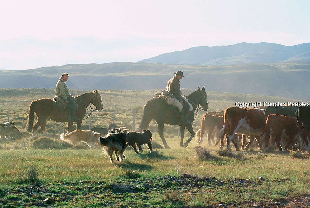 Estancia Las Cumbres, Parque nacional Torres Del Paine, Patagonia, Chile, (editorial use only- no model release)<br />