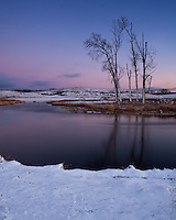 On winter solstice, the first snow of the season fell in northern Illinois. It was only a couple inches, but it was beautiful at Glacial Park on the edge of Nippersink Creek. After the sun went down on the shortest day of the year, the soft pink and blue colors of twilight set in as the temperature dropped.