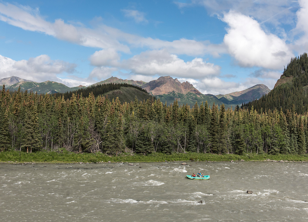 A family of four, 2 adults, 2 children, with a male rafting guide on a nice sunny summer day on the Nanana River with a white spruce forest and Mt. Fellows in the background. The Nenana River forms, in part, the eastern boundary to Denali National Park, Alaska PLEASE CONTACT US FOR DIGITAL DOWNLOAD AND PRICING.