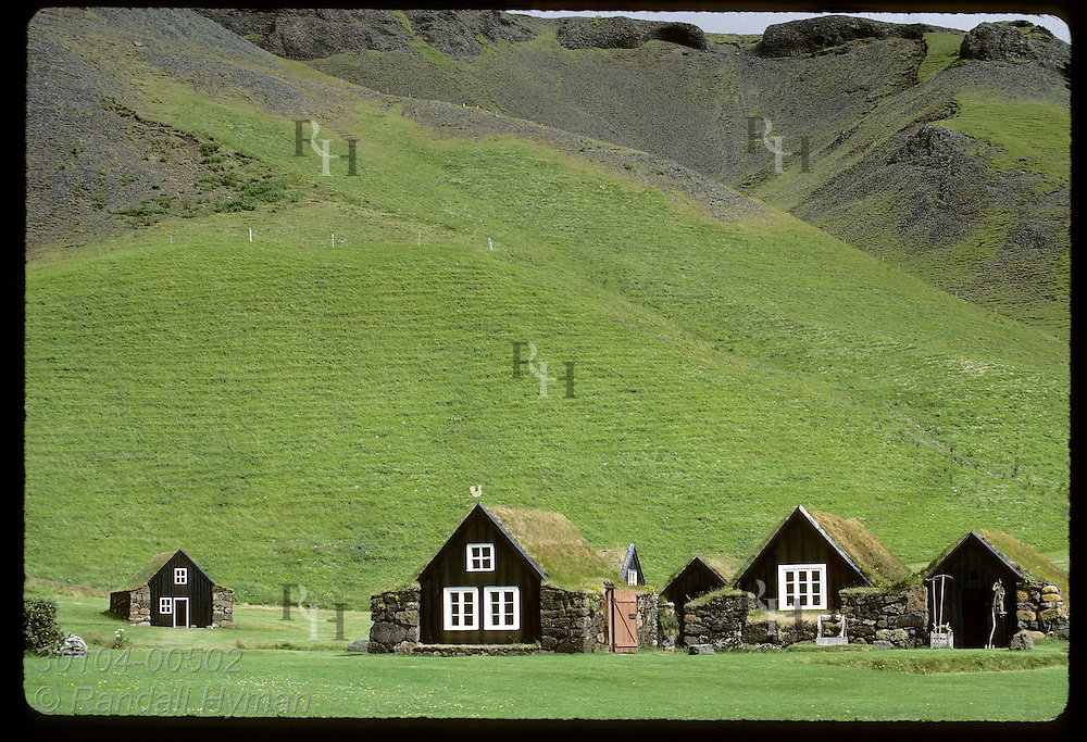 Turf farmhouses of the Skogar folk museum blend with grassy hill behind; mid-summer, Skogar Iceland