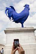 German contemporary artist Katharina Fritsch's sculpture 'Hahn/Cock'. A blue cockerel, on The Fourth Plinth in Trafalgar Square, London. The Fourth Plinth was originally intended to hold a statue of William IV, but remained bare due to insufficient funds. For over 150 years the fate of the plinth was debated; in 1999, a sequence of three contemporary artworks to be displayed on the plinth were announced. The success of this initiative led to a commission being formed to decide on a use for the plinth.