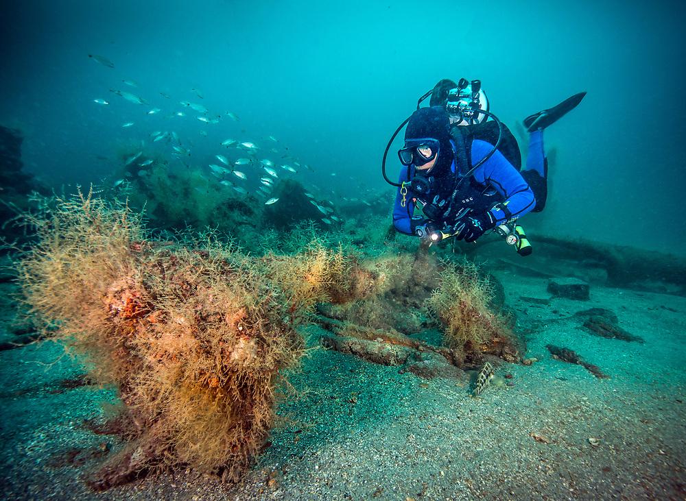 The USS Indra Shipwreck's anchor in North Carolina, USA