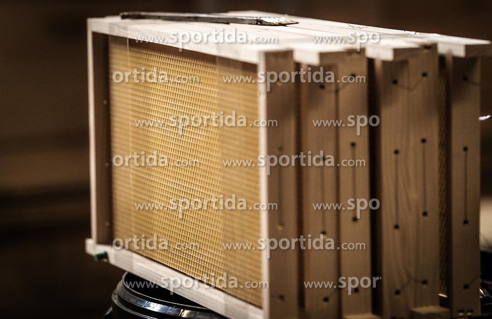 THEMENBILD - neue Wabenrahmen für die Bienenstöcke, aufgenommen am 12. Juni 2019, Piesendorf, Österreich // new honeycomb frames for beehives on 2019/06/12, Piesendorf, Austria. EXPA Pictures © 2019, PhotoCredit: EXPA/ Stefanie Oberhauser
