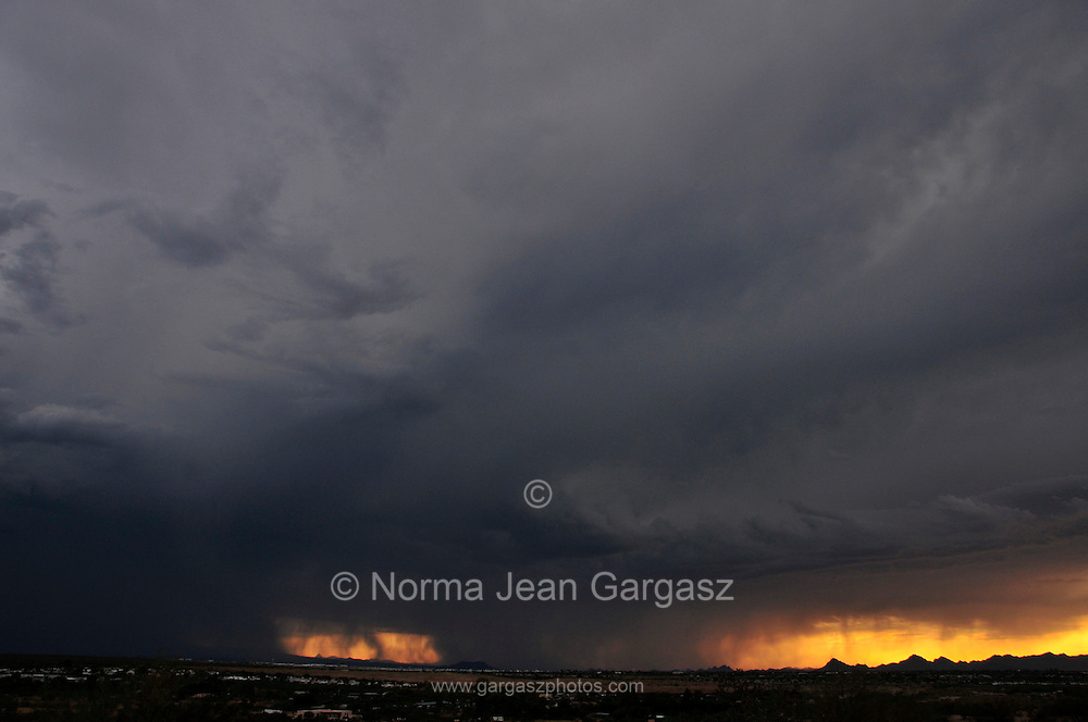 A microburst dumps rain around sunset in monsoon season in the Sonoran Desert,Tucson, Arizona, USA.