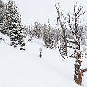 Tanner Flanagan finds insane powder in the backcountry near JHMR.