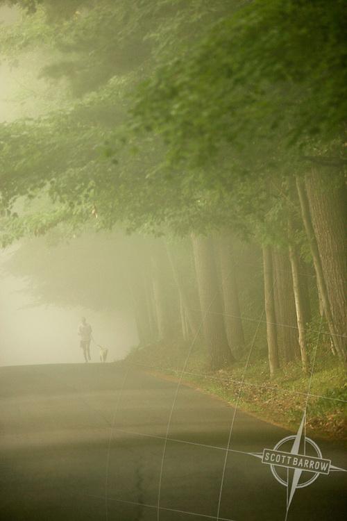 Jog with Dog in Fog.