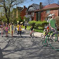 Forsythia Festival 2012 Cabbagetown Toronto, Forsythia festival