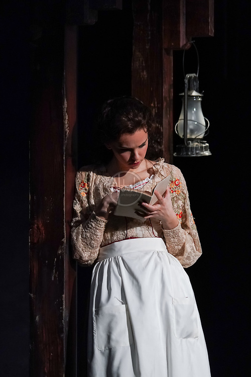 """Seattle Rep """"Ibsen in Chicago"""" by David Grimm, directed by Braden Abraham. Photo by Alabastro Photography."""