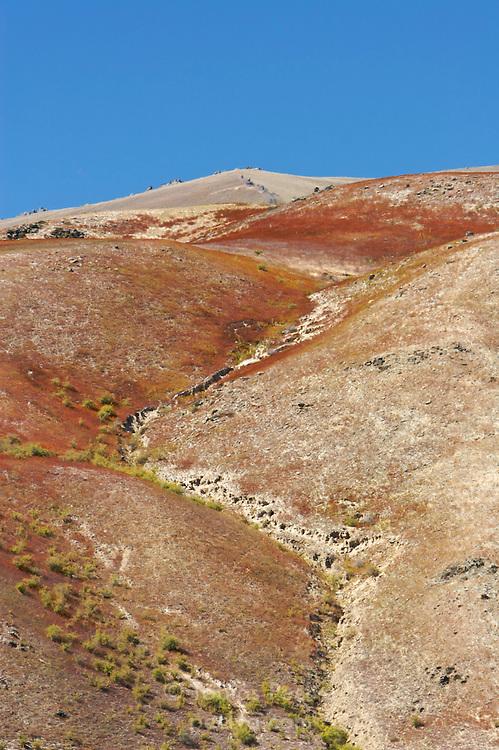 Barren alpine scenery in Lindis Pass, New Zealand.