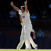 Western Australian bowler Brad Knowles celebrates the wicket of Dominic Thornely during day two of the Sheffield Shield Cricket match between New South Wales and Western Australia at the Sydney Cricket Ground, Sydney, Australia on March 6, 2009.   Photo Tim Clayton