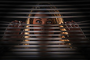 Beautiful girl mysteriously peeking through the blinds