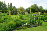 Verbascum phlomoides, Salvia and Geranium in the contemporary border at Waterperry Gardens, Waterperry, Wheatley, Oxfordshire, UK