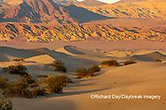 62945-00309 Sand Dunes in Death Valley Natl Park CA