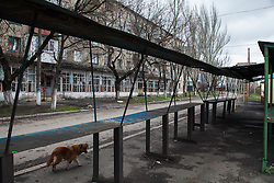 Empty market stalls are common around Debaltsevo, despite rumours of many residents returning to the damaged city following a ceasefire in February. Food, medicine and building supplies, with which to repair their homes, are in short supply and MSF has started a programme of mobile clinics and home visits to reach some of the most vulnerable and most in need with medical care.