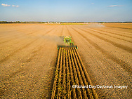 63801-09216 Soybean Harvest, John Deere combine harvesting soybeans - aerial - Marion Co. IL