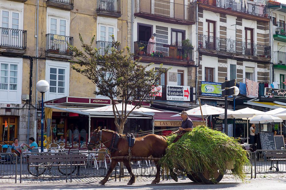 Farmer drives horse and cart full of hay through Laredo, Cantabria, Spain