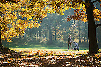 LOCHEM - Herfst op de Lochemse Golfclub, De Graafschap. COPYRIGHT KOEN SUYK