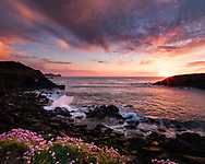 Photographer: Chris Hill, Inishtooskert Island, County Kerry