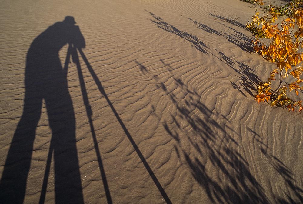Pat O'Hara's afternoon shadow, Kobuk Dunes Wilderness, Kobuk Valley National Park, Alaska, USA