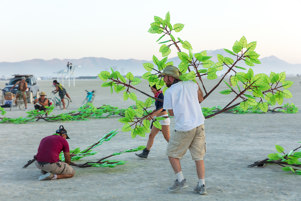 """Tree of Ténéré Build by: Alexander Green, Zachary Smith, and Patrick Deegan from: San Francisco, CA year: 2017<br /> <br /> An enormous lifelike tree, Ténéré offers shade to wanderers, adventure to climbers, and transcendent community to those gathered beneath its 15,000 LED leaves. Like its namesake – considered the most isolated tree on Earth until its destruction in 1973 – Ténéré serves as a place of refuge and ritual for desert wanderers. Standing more than three stories tall, it beckons to passersby with the promise of shade and adventure, conjuring spontaneous communities out of desert sand and sun. At night, LEDs hidden within each leaf begin to glow. The 15,000 leaves form a dome-shaped """"canvas of light"""" that towers over the playa, spanning more than a thousand square feet. Participants lying under the tree experience sublime light shows set to ambient music or live performance. And they directly influence the canopy lights through their sounds and biorhythms, creating moments of transcendent oneness with each other and with nature. URL: https://www.treeoftenere.com Contact: contact.tenere@gmail.com"""