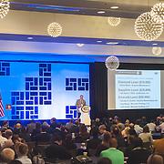 2016 BSCAI Convention