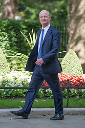 © Licensed to London News Pictures. 10/06/2014. Westminster, UK David Willetts, Conservative MP, Minister of State (Universities and Science), arrives at Cabinet 10th June 2014. Photo credit : Stephen Simpson/LNP