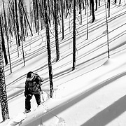 Jim Ryan heads into a burned backcountry area of the Tetons.