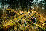 Mikako Sasa and Sara Landvik looking for mushrooms in Hareskoven forrest, Denmark. Story in The New York Times about Novozymes. <br /> Frontpage.
