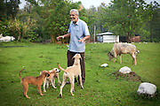 M. C. Mehta, the famous Indian environmental lawyer, is playing with his dogs in his ashram in Dehradun, a hill station in the northern state of Uttarakhand.