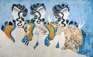 Minoan wall art fresco of 'Ladies in Blue' from Knossos Palace 1600-1450 BC. Heraklion Archaeological Museum.<br /> <br /> The 'Ladies in Blue' Minoan fresco depicts richy dressed female figures with opulent jewelery and clothing with flamboyant hairstyles refecting the wealth of the Palace of Knossos .<br /> <br /> If you prefer to buy from our ALAMY PHOTO LIBRARY  Collection visit : https://www.alamy.com/portfolio/paul-williams-funkystock/minoan-art-artefacts.html . Type -   Heraklion   - into the LOWER SEARCH WITHIN GALLERY box. Refine search by adding background colour, place, museum etc<br /> <br /> Visit our MINOAN ART PHOTO COLLECTIONS for more photos to download  as wall art prints https://funkystock.photoshelter.com/gallery-collection/Ancient-Minoans-Art-Artefacts-Antiquities-Historic-Places-Pictures-Images-of/C0000ricT2SU_M9w