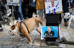 "© Licensed to London News Pictures. 07/10/2018. London, UK. Dogs make use of a pee station adorned with an image of Boris Johnson during the 'Wooferendum' march and rally to Parliament Square to demand a ""People's Vote"" on the final Brexit agreement.  Photo credit: Peter Macdiarmid/LNP"
