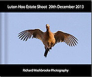 Luton Hoo Estate Shoot  20th December 2013