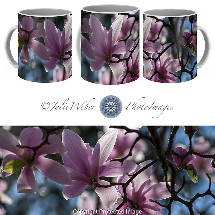 Coffee Mug Showcase 93 - Shop here:https://2-julie-weber.pixels.com/featured/1-magnolia-net-julie-weber.html?product=coffee-mug