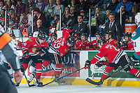 KELOWNA, CANADA - APRIL 8: Braydyn Chizen #22 of the Kelowna Rockets digs for the puck behind Matt Revel #18, and Colton Veloso #39 as Joachim Blichfeld #20 of the Portland Winterhawks attempts to clear the puck from in front of the bench on April 8, 2017 at Prospera Place in Kelowna, British Columbia, Canada.  (Photo by Marissa Baecker/Shoot the Breeze)  *** Local Caption ***