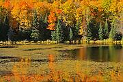 Autumn at Potash Lake<br /> Near Bancroft<br /> Ontario<br /> Canada
