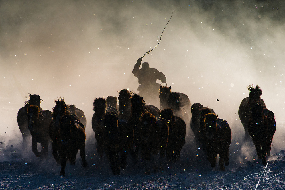 Inner Mongolia horseman engulfed by mist in a freezing winter's morning. Grand Prize and People Category Winning Photo of 2016 National Geographic Travel Photographer of the Year Contest. (Dec 2015, Inner Mongolia)
