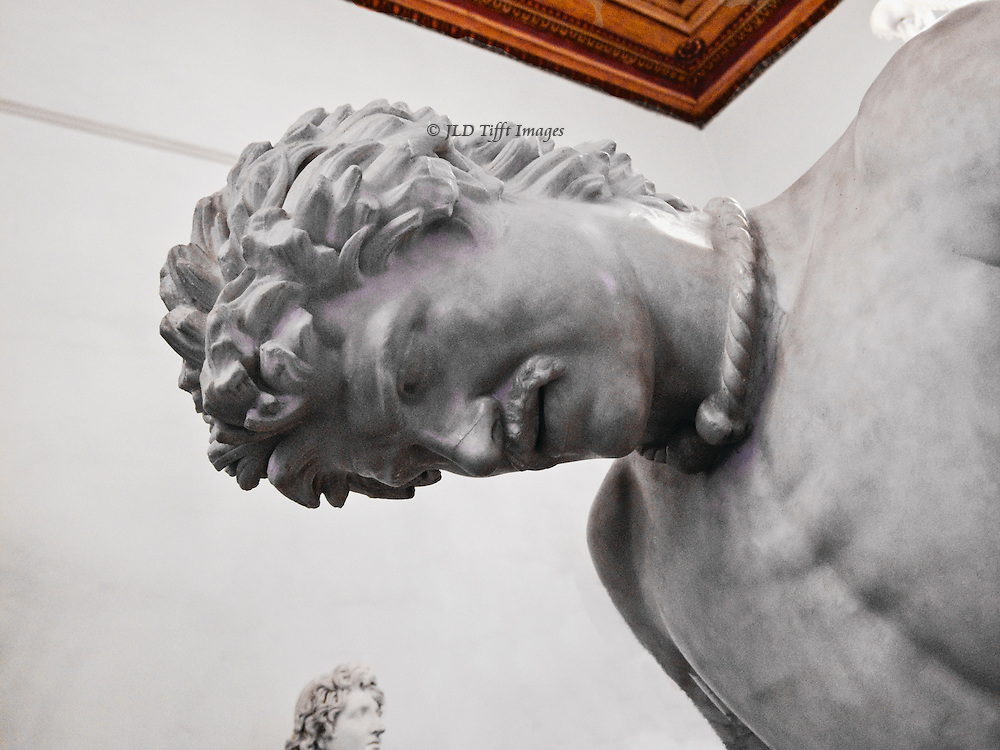 Dying Gaul statue, detail of head and face showing expression of pain.