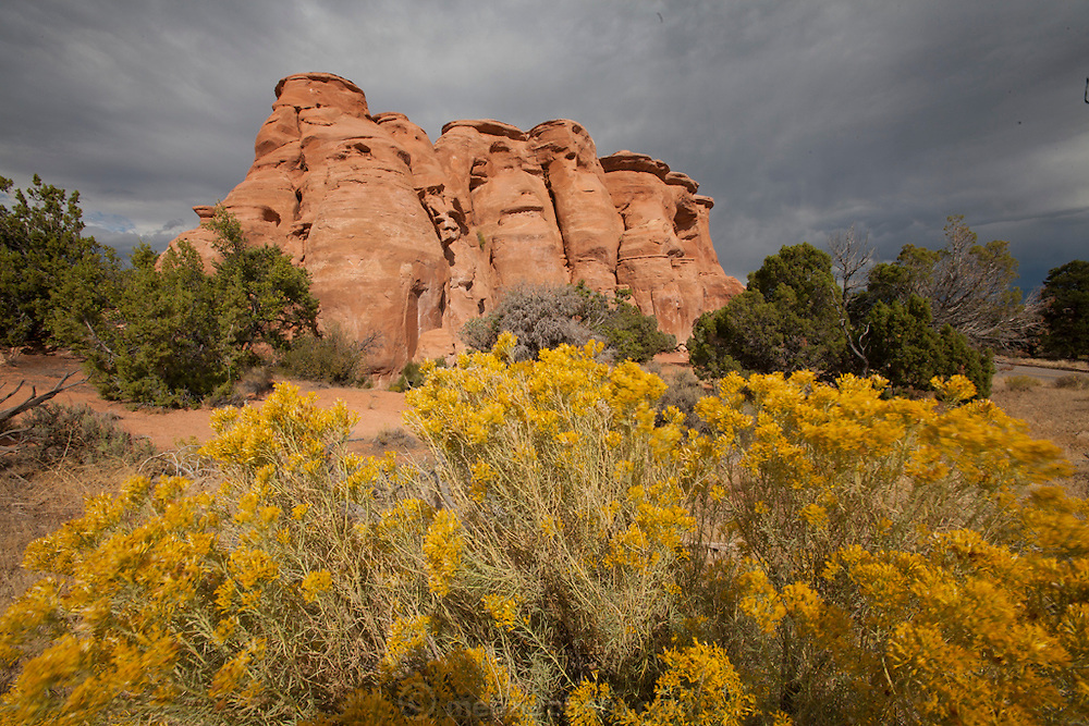Colorado National Monument near Grand Juntion, Colorado