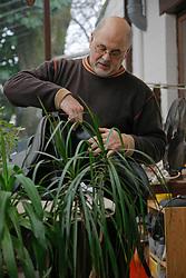 Teirlynck Denis<br /> Hansbeke 2008<br /> Photo © Dirk Caremans