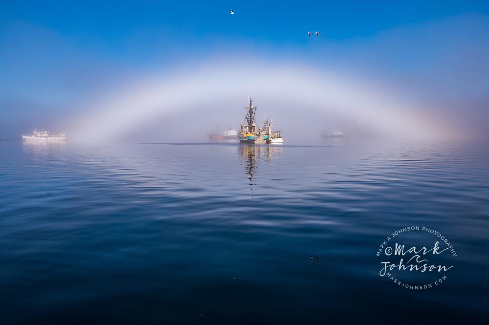 Fogbow over fishing boats, Eliason Harbor, Sitka, Alaska, USA