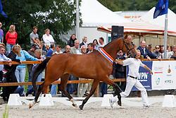 184 - Contessa<br /> KWPN Paardendagen Ermelo 2010<br /> © Dirk Caremans
