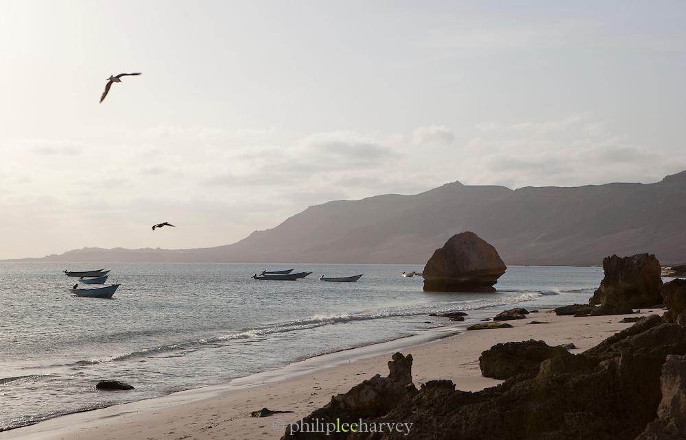 Fishing boats moored in the shores at Arhur, Socotra, Yemen