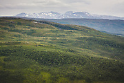 Tundra | Landscape of mountain tundra, Norway