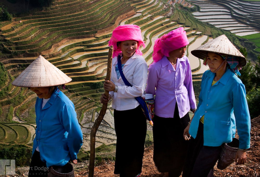 Four women finish planting rice on the side of this mountain in far North Vietnam. Rice paddies can be seen below. Robert Dodge, a Washington DC photographer and writer, has been working on his Vietnam Unexpected project since 2005. The project has taken him throughout Vietnam, including Hanoi, Ho Chi Minh City (Saigon), Nha Trang, Mue Nie, Phan Thiet, the Mekong, Sapa, Ninh Binh and the Perfume Pagoda. His images capture scenes and people from women in conical hats planting rice along the Red River in the north to men and women working in the floating markets one the Mekong River and its tributaries. Robert's project also captures the traditions of ancient Asia in the rural markets, Buddhist Monasteries and the celebrations around Tet, the Lunar New Year. Also to be found are images of the emerging modern Vietnam, such as young people eating and drinking and embracing the fashions and music of the west. Robert Dodge, a Washington DC photographer and writer, has been working on his Vietnam Unexpected project since 2005. The project has taken him throughout Vietnam, including Hanoi, Ho Chi Minh City (Saigon), Nha Trang, Mue Nie, Phan Thiet, the Mekong, Sapa, Ninh Binh and the Perfume Pagoda. His images capture scenes and people from women in conical hats planting rice along the Red River in the north to men and women working in the floating markets one the Mekong River and its tributaries. Robert's project also captures the traditions of ancient Asia in the rural markets, Buddhist Monasteries and the celebrations around Tet, the Lunar New Year. Also to be found are images of the emerging modern Vietnam, such as young people eating and drinking and embracing the fashions and music of the West.