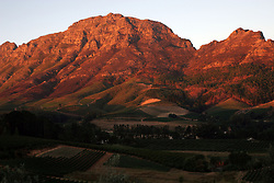 Feb 27, 2006; Stellenbosch, SOUTH AFRICA; Vineyards at sunset in Stellenbosch, South Africa. Stellenbosch is the capital of the Cape Winelands and was the second town to be founded in South Africa in 1685. A main tourist attraction of the Western Cape, Stellenbosch boosts over 200 estates that offer wine tastings (Credit Image: © Krista Kennell/ZUMAPRESS.com)