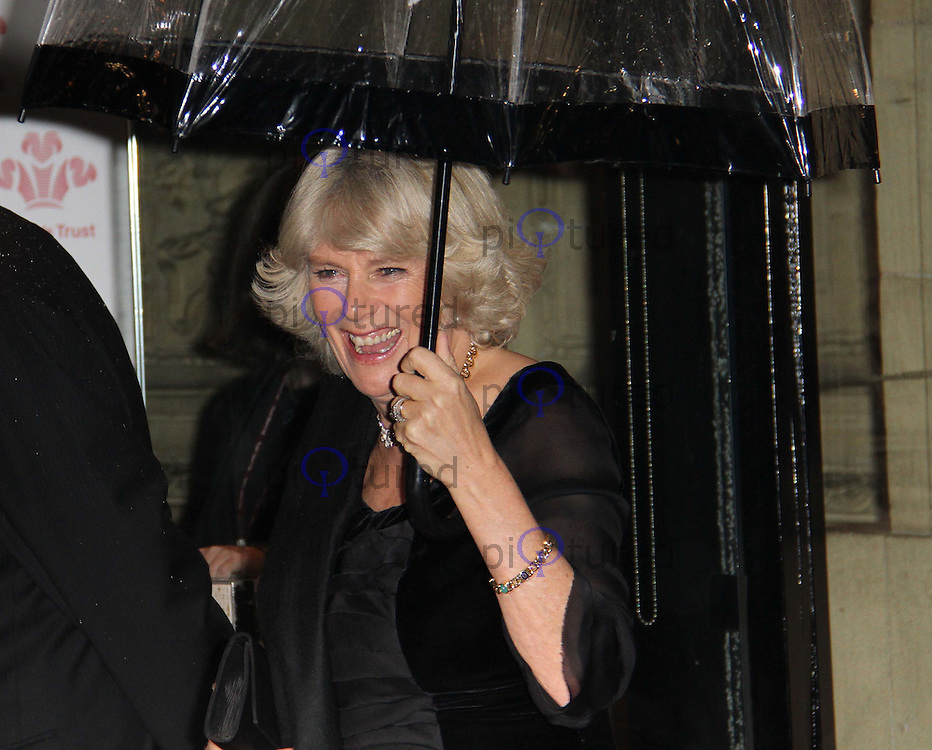 Camilla Duchess of Cornwall The Prince's Trust Rock Gala, Royal Albert Hall, London, UK, 17 November 2010: piQtured Sales: Ian@Piqtured.com +44(0)791 626 2580 (picture by Richard Goldschmidt)