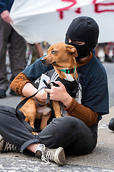 """© Licensed to London News Pictures; 03/07/2021; Bristol, UK. A masked Kill the Bill protester holds a dog during a fourteenth """"Kill the Bill"""" protest in Bristol against the Police, Crime, Sentencing and Courts Bill during the Covid-19 coronavirus pandemic in England. Protesters marched up the M32 and blocked traffic for a time. The Police, Crime, Sentencing and Courts Bill proposes new restrictions on protests and is due to return to the House of Commons for debate on Monday 05 July. Some previous Kill the Bill protests in Bristol had violence. Photo credit: Simon Chapman/LNP."""