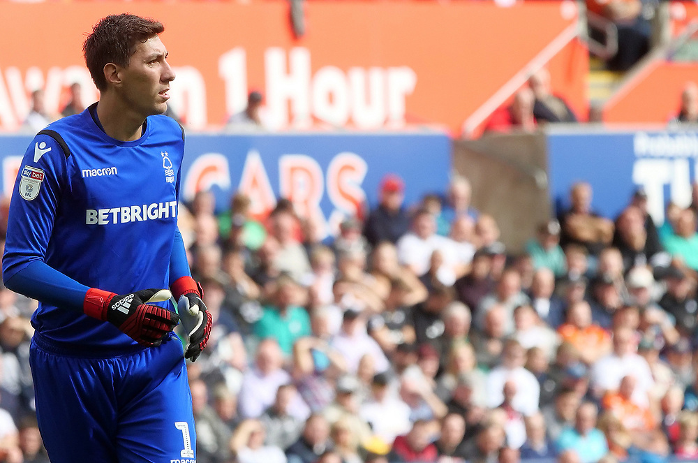 Nottingham Forest's Costel Pantilimon in action during todays game <br /> <br /> Photographer Ian Cook/CameraSport<br /> <br /> The EFL Sky Bet Championship - Swansea City v Nottingham Forest - Saturday 15th September 2018 - Liberty Stadium - Swansea<br /> <br /> World Copyright © 2018 CameraSport. All rights reserved. 43 Linden Ave. Countesthorpe. Leicester. England. LE8 5PG - Tel: +44 (0) 116 277 4147 - admin@camerasport.com - www.camerasport.com