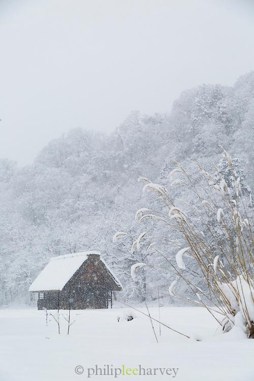 Scenic winter landscape with covered in snow cabin, Shirakawa-go, Japan